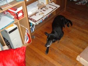 Dina guarding a puzzle