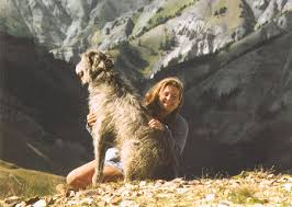 pam houston and dog