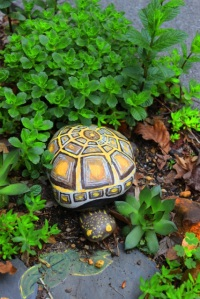 Turtle guards the garden.